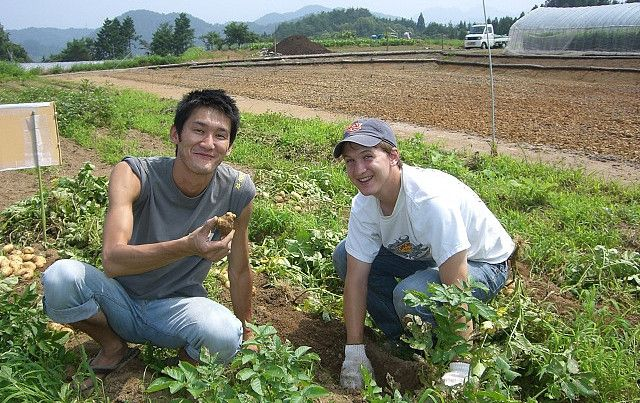 World Wide Opportunities on Organic Farms