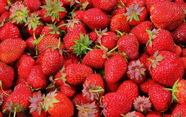 bundle of bright red organic strawberries