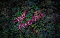 Pink neon says AND BREATHE on wall of green plants