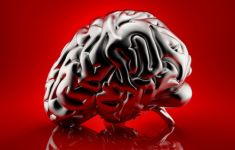 Chrome model of human brain on vivid red background