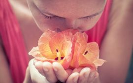 A Buddhist monk sniffs flowers in his hands.
