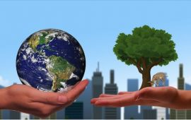 Graphic of two hands, one holding the world the other holding a green tree