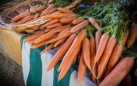 bunches of organic carrots on table