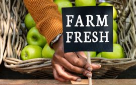 Hand places sign that says FARM FRESH infront of fruit basket
