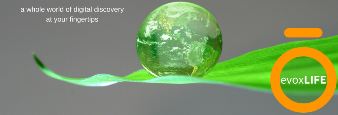 green globe balanced on blade of grass with evox Life logo